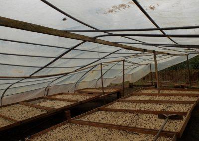 Vochtigheidssensor voor koffiebonen