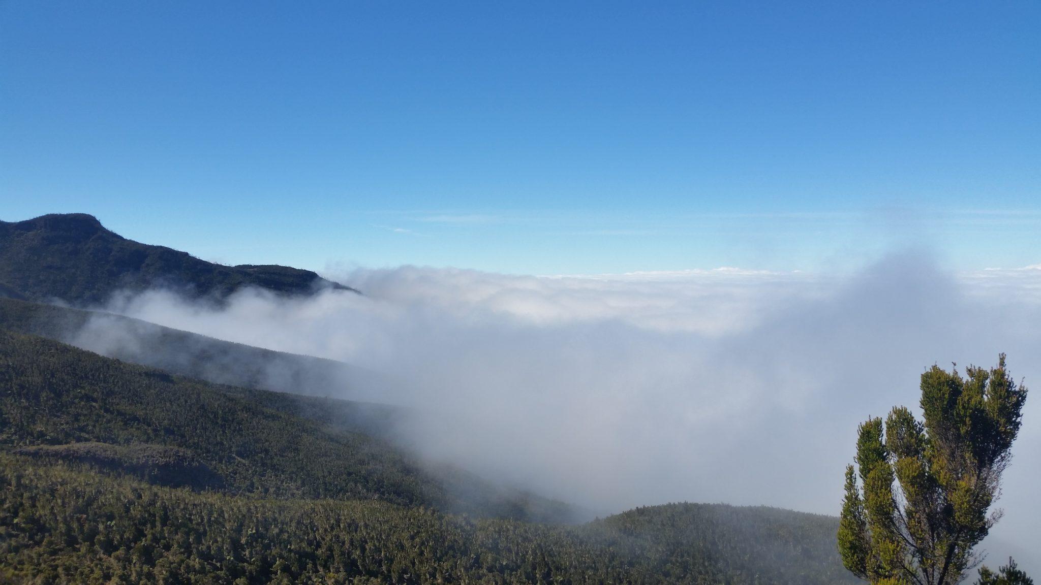 Jolan was alvast helemaal in de wolken met zijn reis!