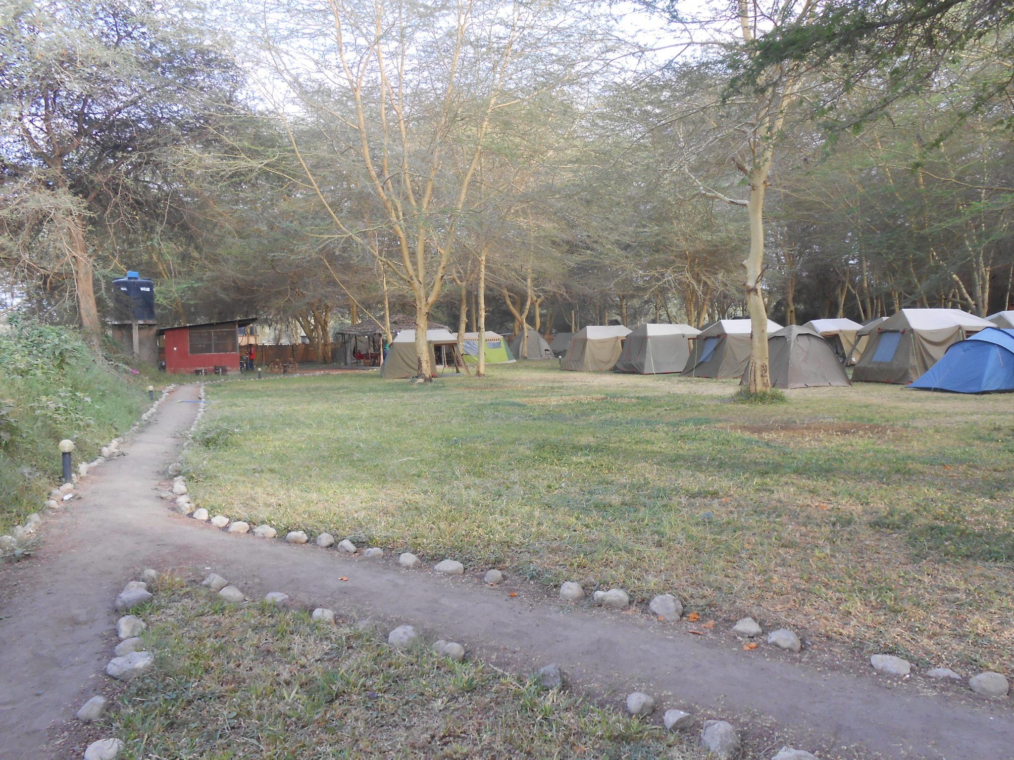 Lilac Camp Site vroeg in de ochtend