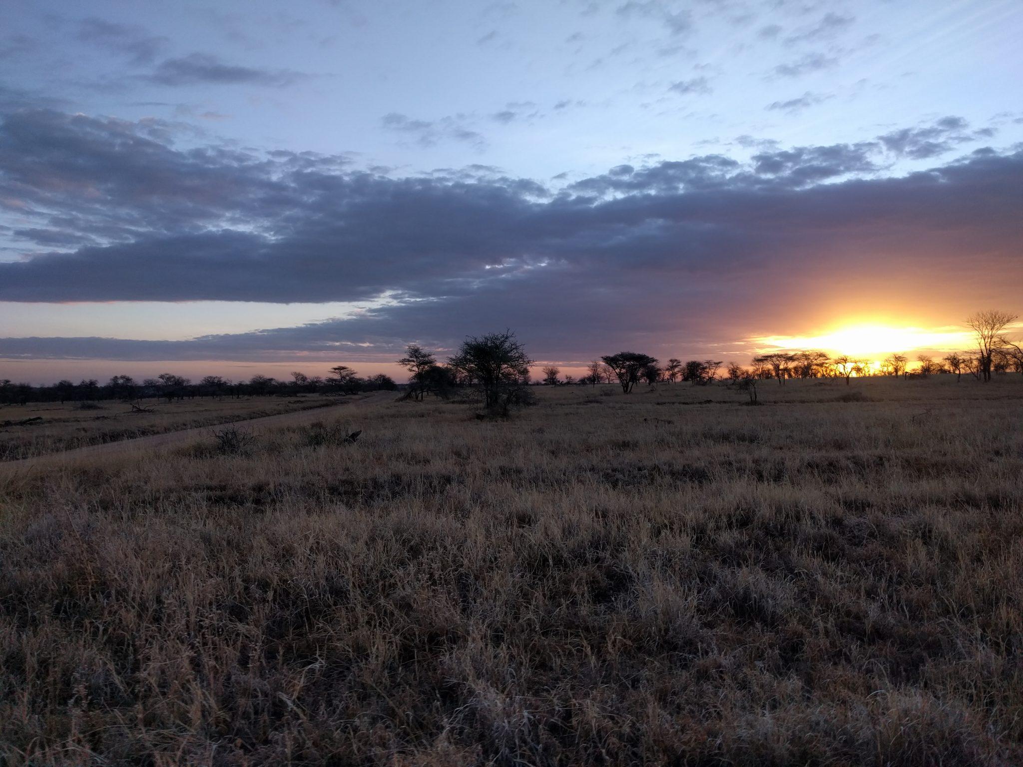 Zonsopgang boven de Serengeti