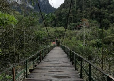 Selva uitzicht